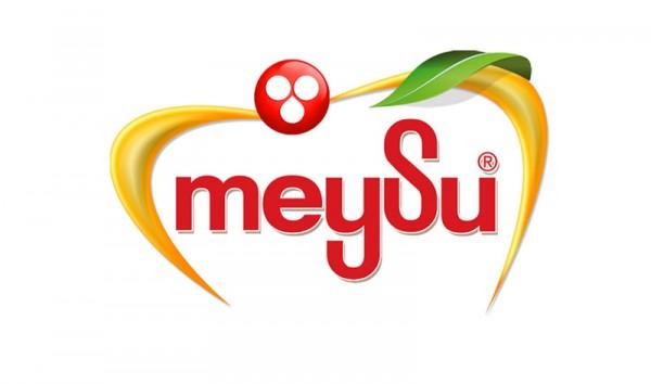 Meysu_Logo
